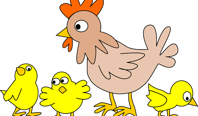 poultry-152370_640